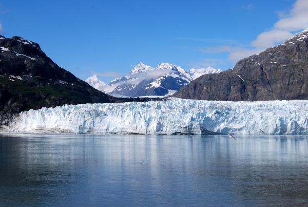 Margerie Glacier - Largest Glaciers
