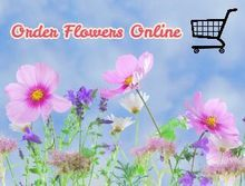Best Places to Order Flowers Online
